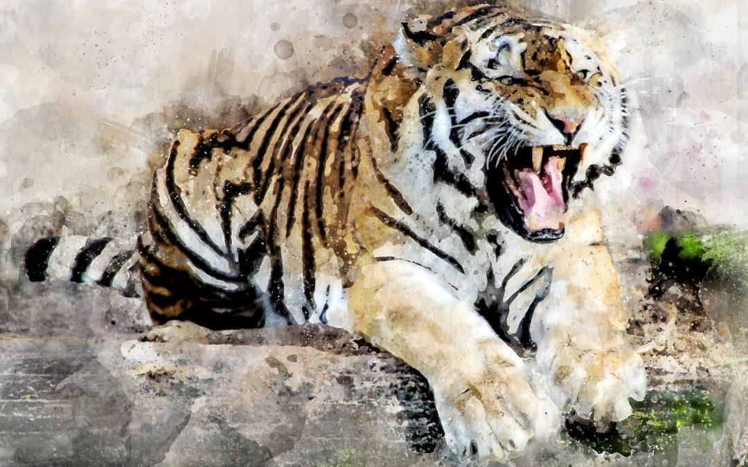Hole den Tiger raus aus dir – Stärken stärken